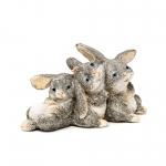 Kaniner der krammer